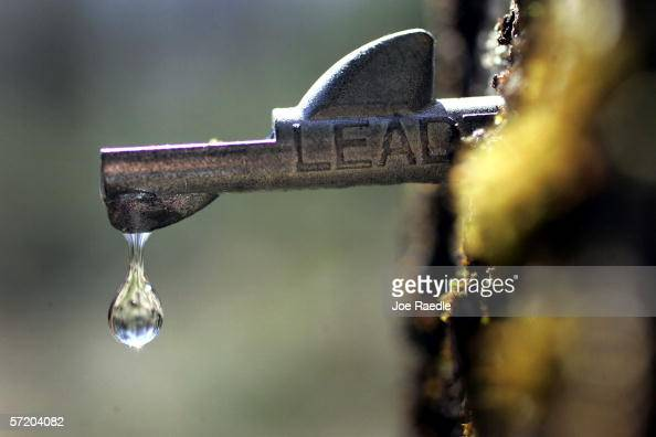 A drop of fresh sap falls from a tap in a maple tree March 28 2006 in Bowdoin Maine Earle Mitchell and his wife Penny Savage run the maple syrup...