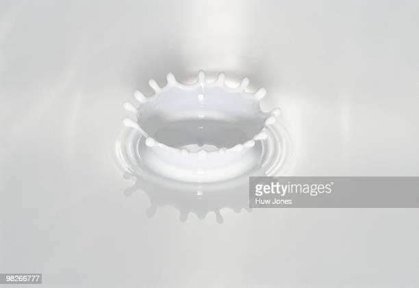 Drop of milk
