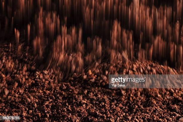 dropping sawed coffee bean