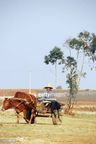 Farmers like Ling Shiwei haven't been able to farm without water This part of southwestern China has been one of four provinces that has not seen...