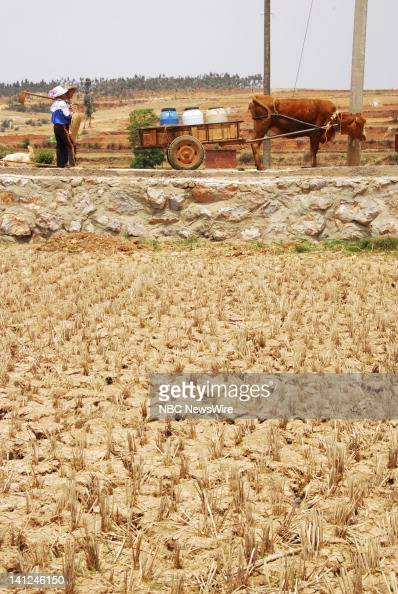 Villagers in Dege used to farm rice a region staple but without rainfall since last July they've stopped trying to grow this waterintensive crop This...