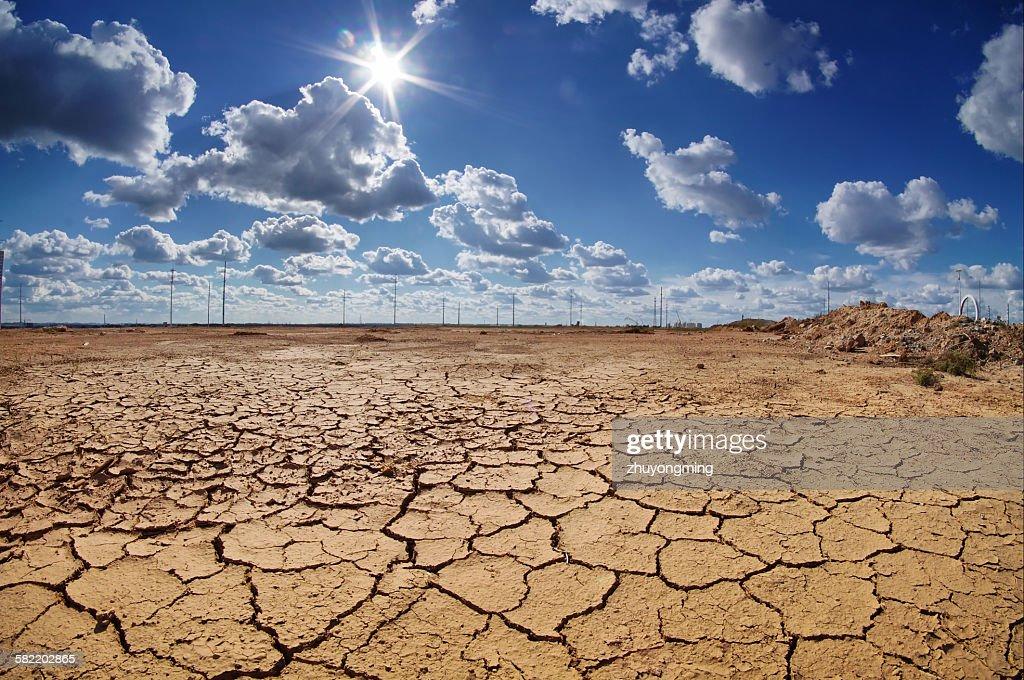 Drought land : Stock Photo