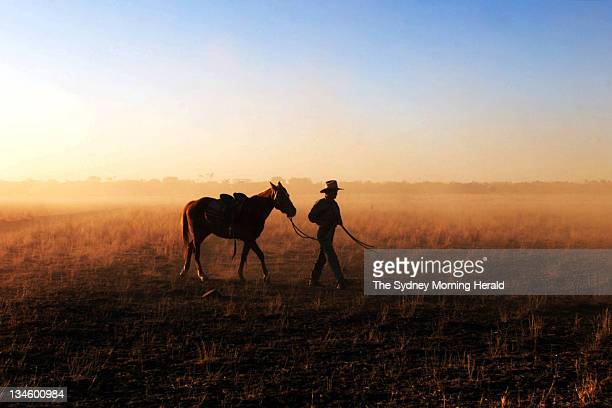 Drover Shaun Zeller herds cattle near the central western Queensland town of Barcaldine on Tuesday 23 July 2002