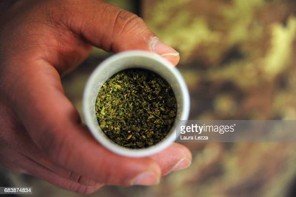 Drug cannabis produced by the Italian Army at Stabilimento Chimico Farmaceutico Militare is displayed on May 16 2017 in Florence Italy The Military...