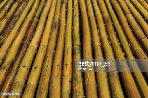 Dry Bamboo Background. : Stock Photo