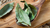 Dry Bay Leaves - Laurel Tree leaves, aromatic herb and Indian spices on the wooden spoon, rustic background, macro.