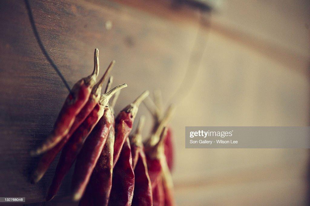 Dry chili : Stock Photo