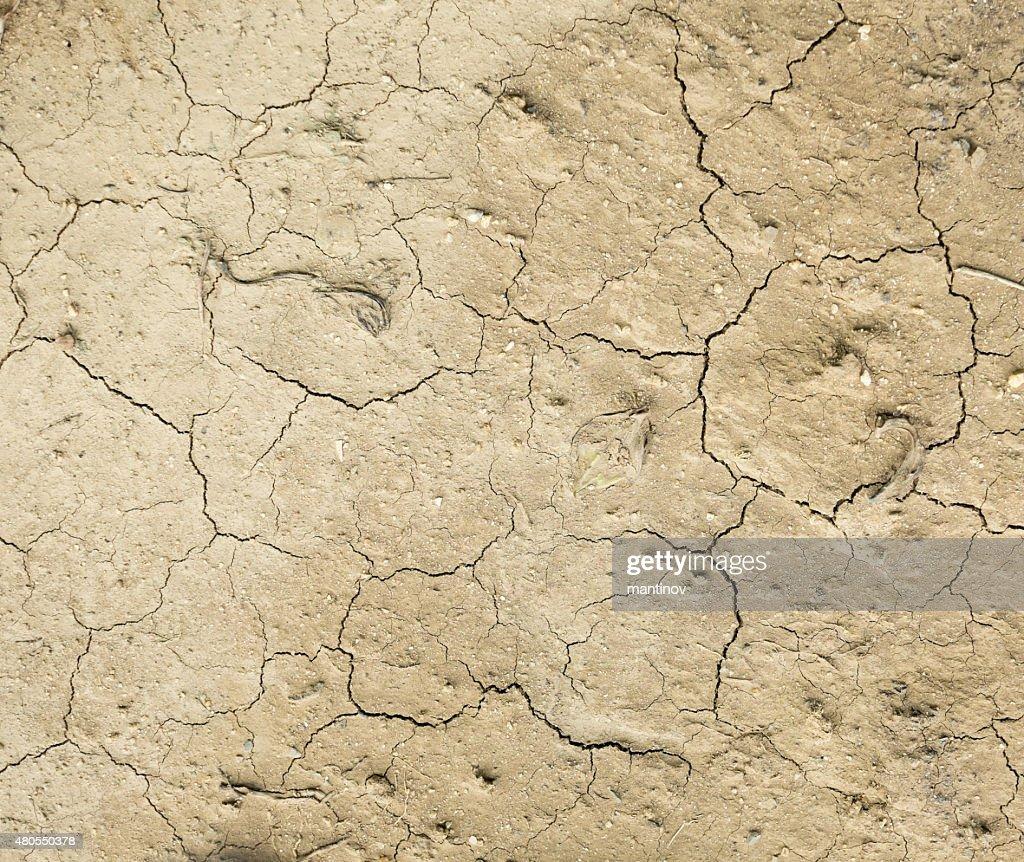 Textura como plano de fundo seca terra batida : Foto de stock