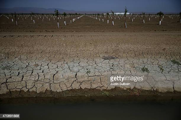 Dry cracked earth is visible on the banks of an irrigation canal on April 23 2015 in Firebaugh California As California enters its fourth year of...