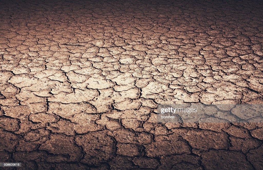 Dry Cracked Earth : Stock Photo
