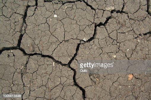 Dry cracked ground : Stock Photo