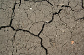 Dry cracked ground texture. Cracked surface of mud
