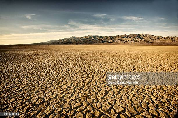 Dry Cracked Lake Bed