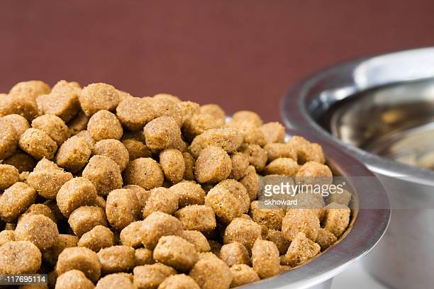 Dry Dog Food and Water