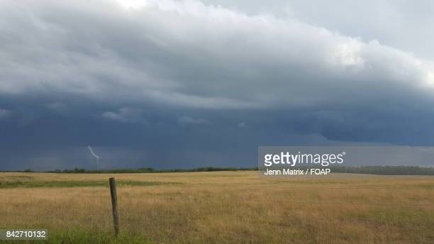 Dry grassy field against cloudy sky