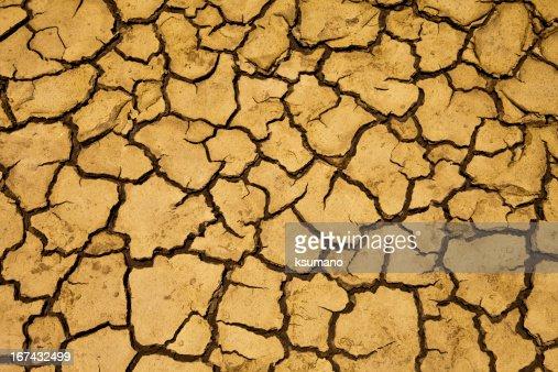 dry ground : Stock Photo