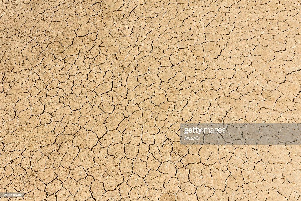 Dry land. Cracked ground background. : Stock Photo