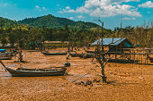 Dry Swamp in Thailand