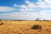 Namibia is a state in southern Africa between Angola, Botswana, Zambia, South Africa and the Atlantic Ocean.
