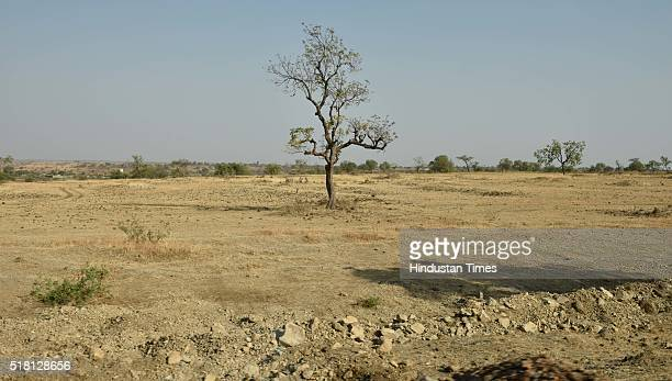 Dry patch of land in Ashti Tehsil on March 23 2016 in Beed India Of the total 1133 farmers committed suicide in the region due to causes ranging from...