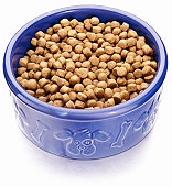 Dry pet food in a bowl with a dog theme
