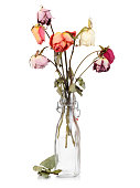 Dry roses in glass bottle isolated on white