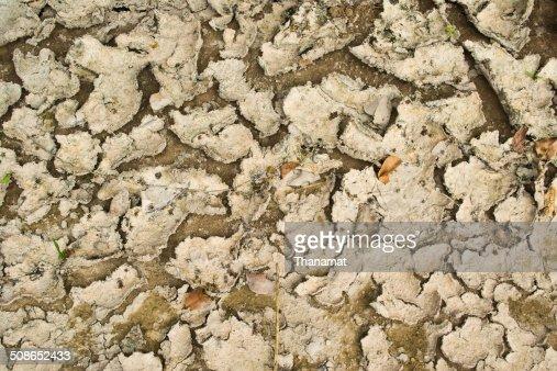 Dry soil texture background : Stock Photo