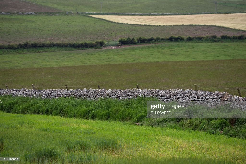 A dry stone wall marks the border between England and Scotland near Berwick-upon-Tweed in northern England close to the border between England and Scotland on June 26, 2016. Scotland's First Minister Nicola Sturgeon campaigned strongly for Britain to remain in the EU, but the vote to leave has given the Scottish National Party leader a fresh shot at securing independence. Sturgeon predicted more than a year ago that a British vote to leave the alliance would give pro-European Scots cause to hold a second referendum on breaking with the UK. SCARFF