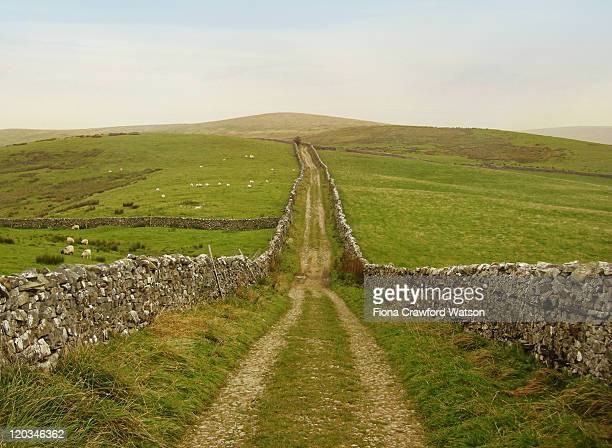 Dry stone walls in Yorkshire