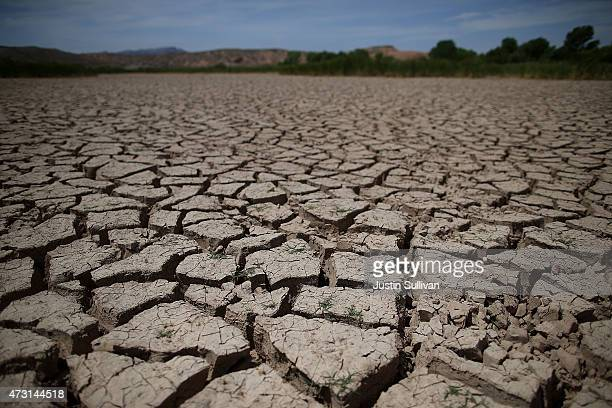 Drycracked earth is seen at the Overton Wildlife Management Area on May 12 2015 in Overton Nevada As severe drought grips parts of the Western United...