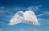 Drying angel's wings.