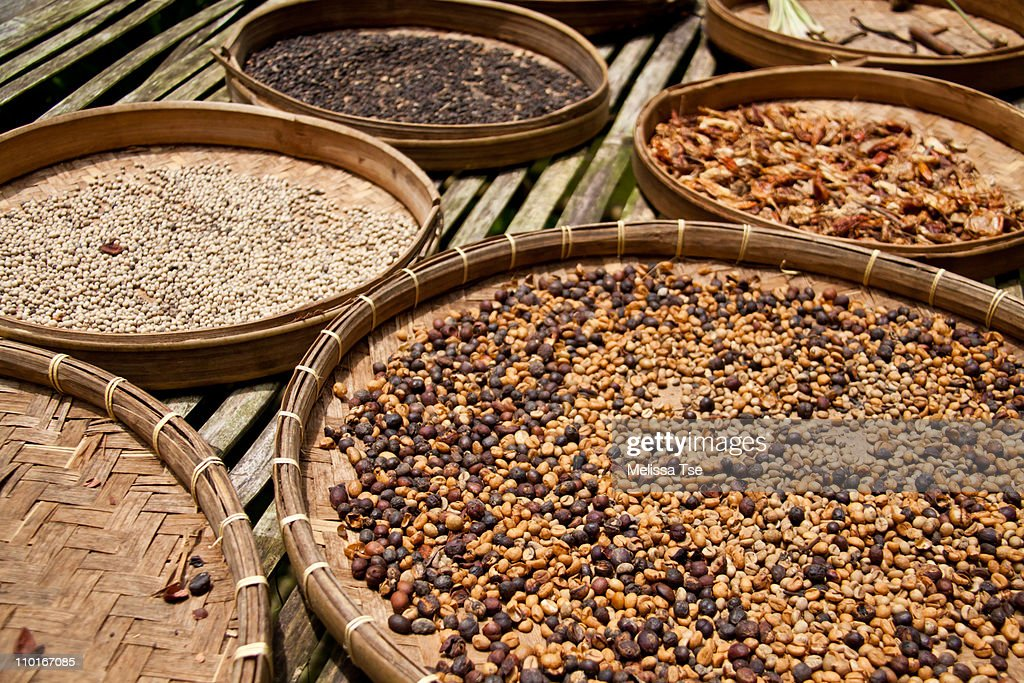 Drying raw coffee beans at plantation farm in Bali : Stock Photo