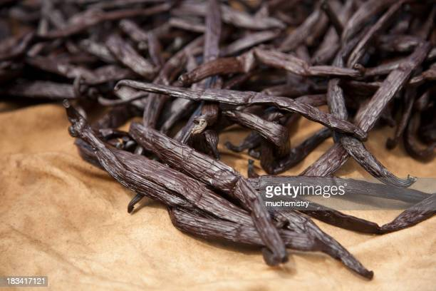 Drying Tahitian Vanilla Beans