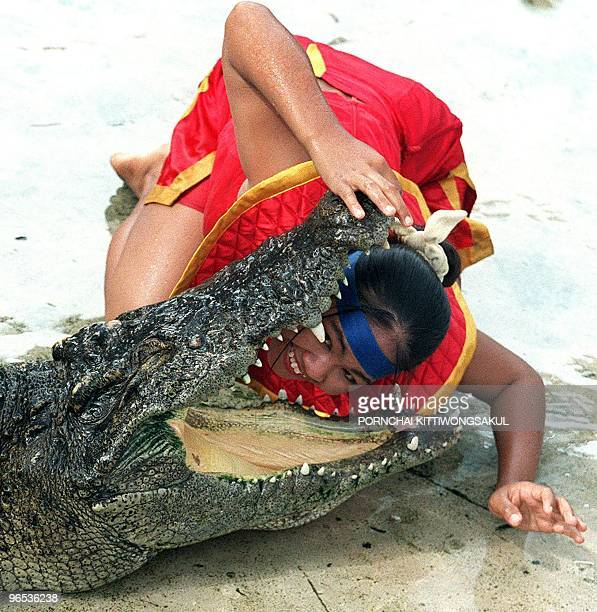 Duangdeun Pongpetch puts her head inside the jaws of a threemeter long crocodile during her exiting show 07 September at Tiger Zoo in Sri Racha...