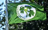 IRL: Ireland v Scotland - T20 International Tri Series