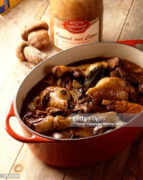 Duck and cep stew