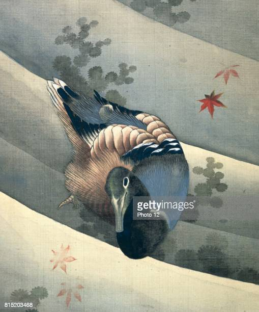 Duck Swimming in Water' 1847 Ink and colours on silk Katsushika Hokusai Japanese artist and printmaker
