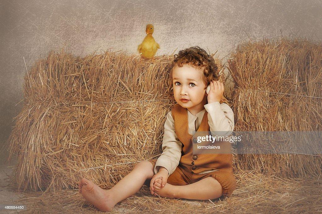 Patinho de pé no feno, e o rapaz slushet ovo : Foto de stock
