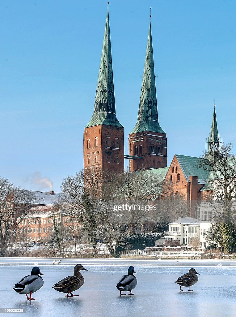 Ducks walk on a sea in front of the dome in Luebeck, northern Germany, on January 15, 2013.Meteorologists forecast temperatures around minus 4 degrees for the coming days in Germany.AFP PHOTO / Markus Scholz GERMANY OUT