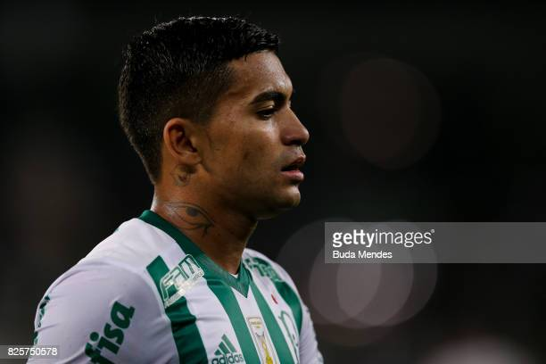 Dudu of Palmeiras looks on during a match between Botafogo and Palmeiras as part of Brasileirao Series A 2017 at Nilton Santos Stadium on August 2...