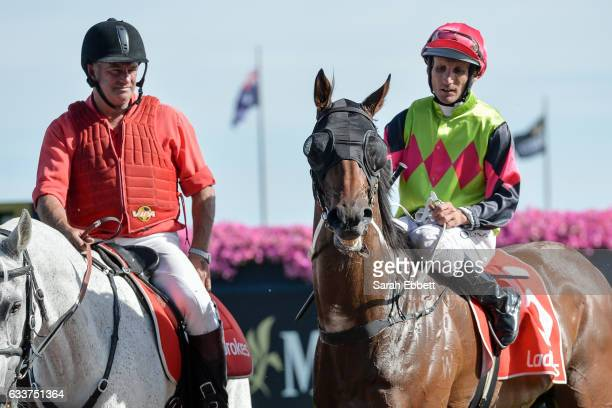 Duke of Brunswick ridden by Damien Oliver returns after winning Darren Gauci Farewell Handicap at Caulfield Racecourse on February 04 2017 in...