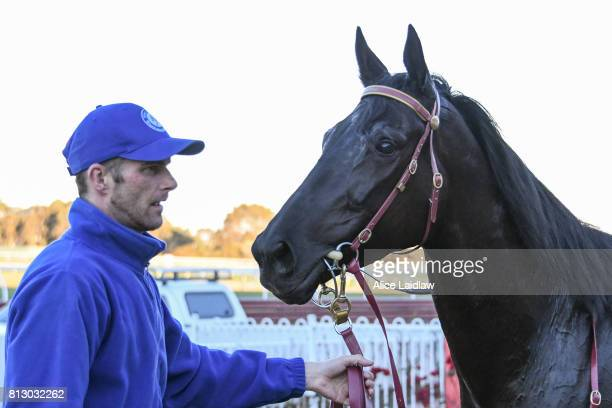 Dulverton after winning the The Cove Handicap at Ladbrokes Park Lakeside Racecourse on July 12 2017 in Springvale Australia