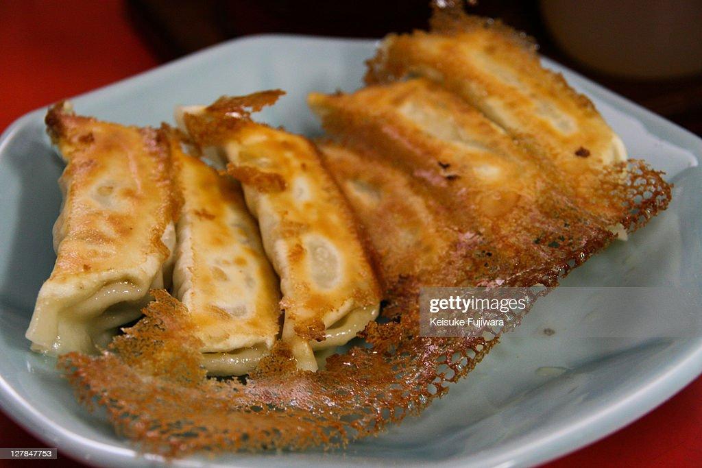 Dumplings ( Gyoza ) : Stock Photo