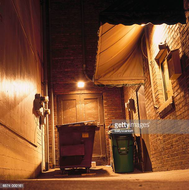 Dumpster in Alley