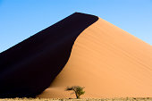Dune 45 Desert Sanddune Nambia