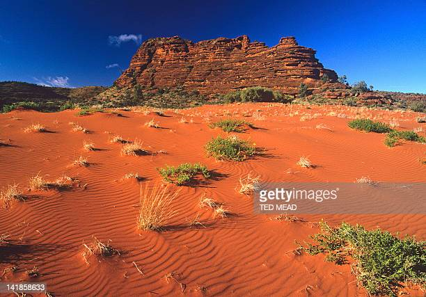 A dune and rocky outcrop in the Finke Gorge National Park, Northern Territory, Australia.