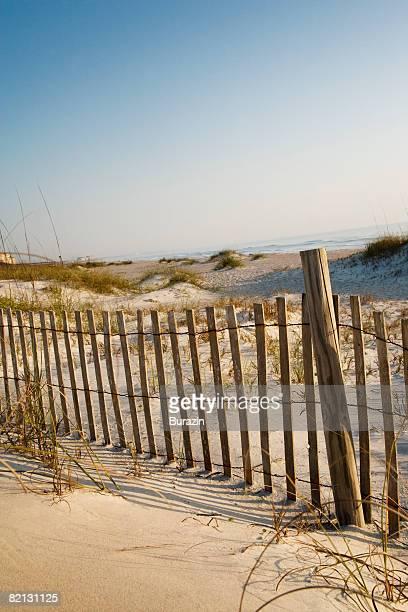 Dune Fence on Beach