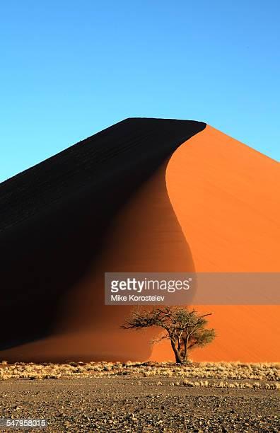 Dune, Namib desert
