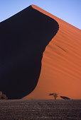 Dune of Namib Naukluft Park