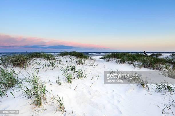 Dune on Dueodde Bornholm island Denmark